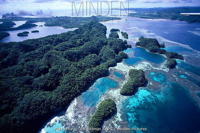 Aerial view of fringing coral reef, Palau, Micronesia  -  Jeff Rotman/ npl