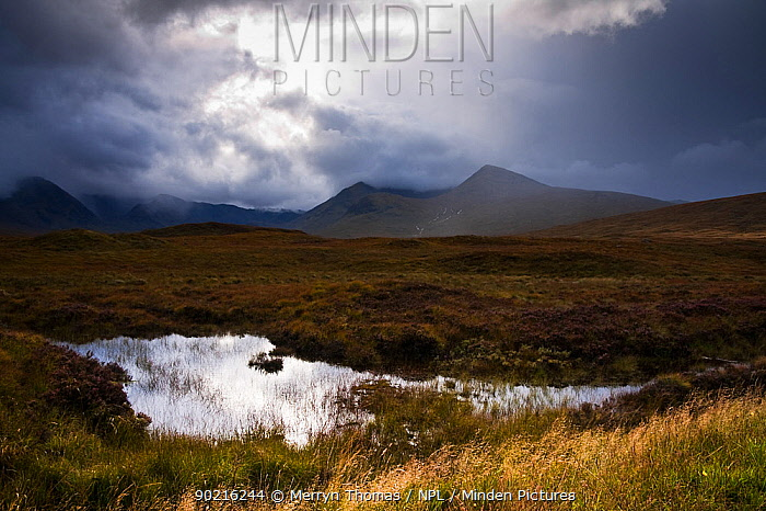 Rannoch Moor on a rainy day Highlands, Scotland September 2010  -  Merryn Thomas/ npl