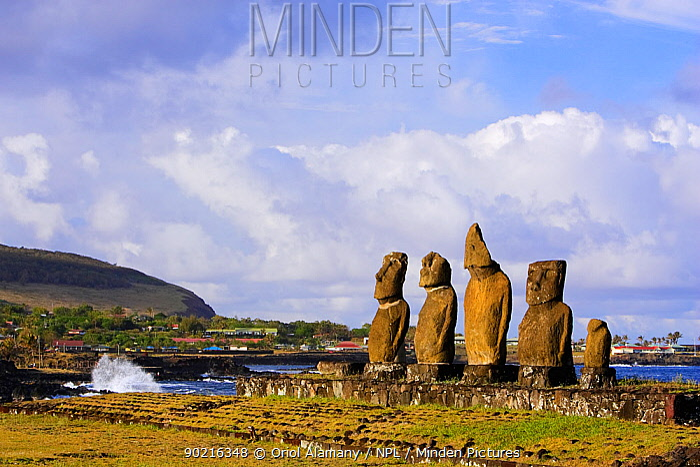 Moai statues stand erect at the restored archaeological sites of Ahu Vai Uri and Ahu Tahai in Hanga Roa, Easter Island (Pascua, Rapa Nui), Unesco World Heritage Site, November 2004  -  Oriol Alamany/ npl