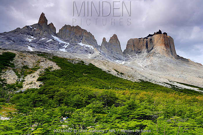 La Espada (2500 m) and the Horns of Paine (2600 m) peaks seen from El Fances valley on the W Trek, Torres del Paine National Park, Patagonia, Chile, January 2006  -  Oriol Alamany/ npl