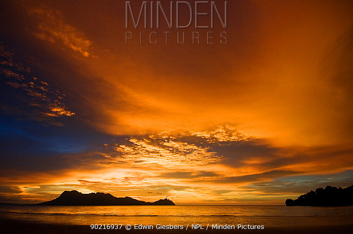 View of sunset and colourful skies, from the beach at Bako National Park, Sarawak, Borneo, Malaysia, June 2010  -  Edwin Giesbers/ npl