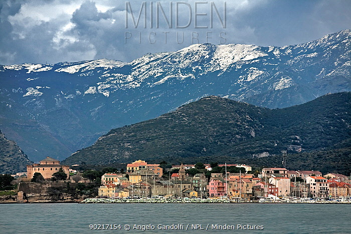 The village of St-Florent with snow-capped mountains behind, Corsica island, France, February 2010  -  Angelo Gandolfi/ npl
