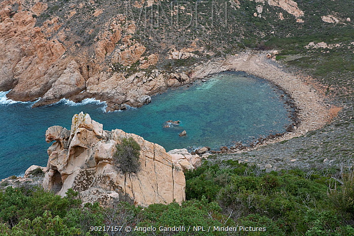View of a secluded bay between Galeria and Calvi Corsica island, France, February 2010  -  Angelo Gandolfi/ npl