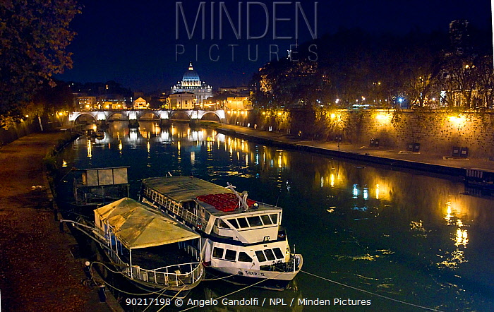 The river Tiber at night with St Peter's cathedral, Vatican, background Rome, Italy, December 2009  -  Angelo Gandolfi/ npl