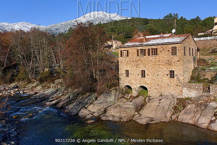 An old mill on the Asco river, Parc Naturel Regional de Corse, Calvi, Corsica island, France, February 2010  -  Angelo Gandolfi/ npl