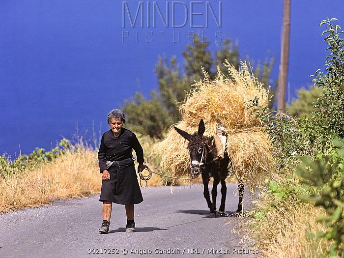 Elderly lady walking down a road, leading her donkey laden with hay, Island of Crete, Greece  -  Angelo Gandolfi/ npl