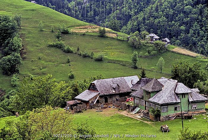 Traditional farms in South Carpathian mountains, Romania  -  Angelo Gandolfi/ npl