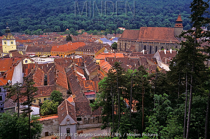 View of roof tops in the old town district of Brasov, Transylvania, Romania  -  Angelo Gandolfi/ npl