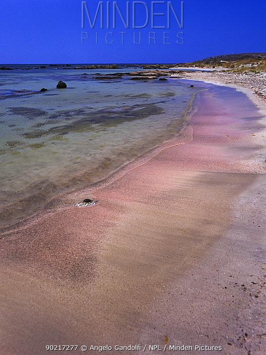 Elafonissi beach with red coral sand, West coast of Crete, Greece  -  Angelo Gandolfi/ npl