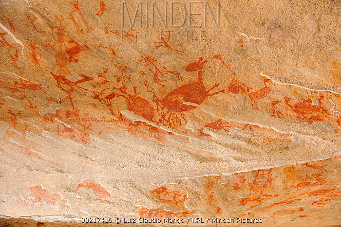 Prehistoric paintings on rock, thought to be 12,000 years old Serra da Capivara National Park, municipality of Sao Raimundo Nonato, Piaua� State, northeastern Brazil July 2010  -  Luiz Claudio Marigo/ npl