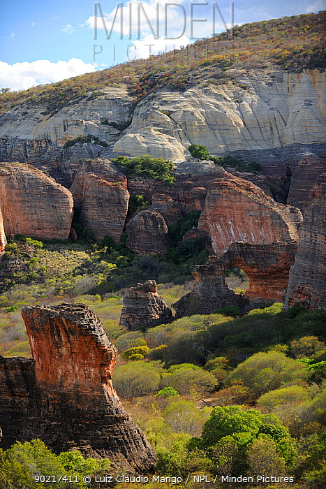 View of of sedimentary conglomerate rocks (on top of hills) and eroded sandstone (bottom) in Serra da Capivara National Park, municipality of Sao Raimundo Nonato, Piaua� State, northeastern Brazil  -  Luiz Claudio Marigo/ npl