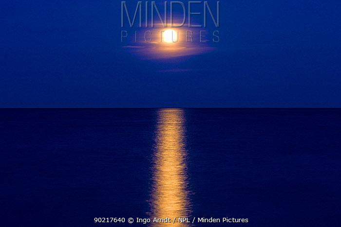 Delaware Bay at full moon, Delaware, USA, May 2008  -  Ingo Arndt/ npl