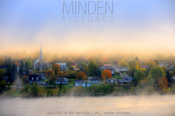Early morning mist and autumn colours in Grande Piles Village and St Maurice river Quebec, Canada, October 2010  -  Eric Baccega/ npl