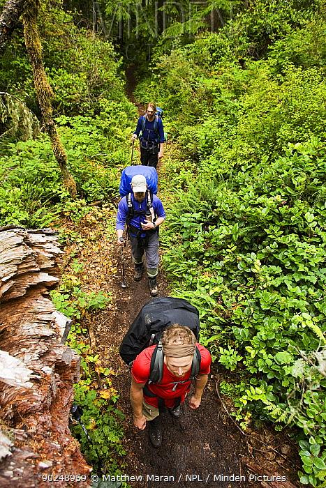 Three hikers on the West Coast Trail Pacific Rim National Park, Vancouver Island, Canada, September  -  Matthew Maran/ npl
