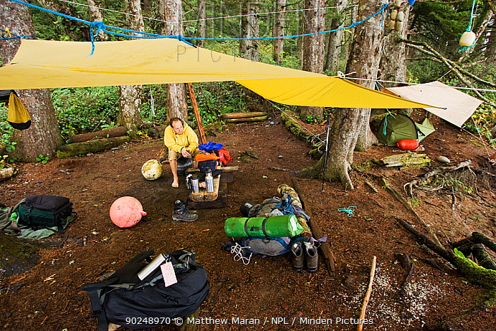 A man resting under a tarpaulin at his campsite The West Coast Trail, Pacific Rim National Park, Vancouver Island, Canada, September  -  Matthew Maran/ npl