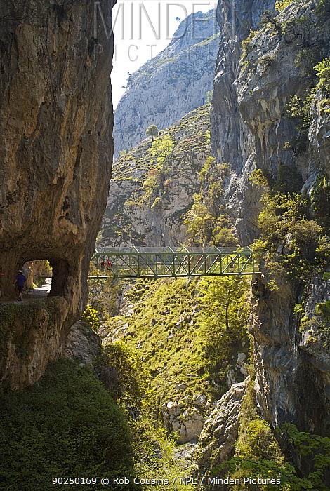 Footbridge over the Cares Gorge, Picos de Europa, Castilla y Leon, Spain, April 2011  -  Rob Cousins/ npl