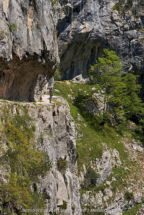 Cares Gorge walk, Picos Europa, Cantabria, Spain, April 2011  -  Rob Cousins/ npl