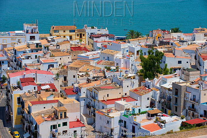 A view over rooftops to the sea Ibiza, Balearic Islands, Spain, June 2006  -  Inaki Relanzon/ npl