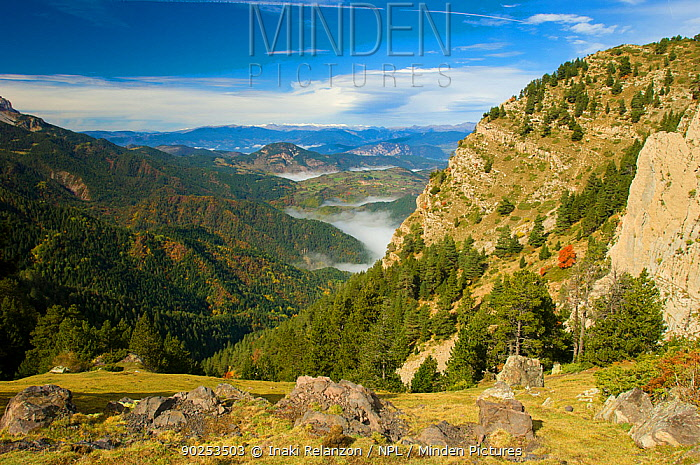 A view down a valley in the Cadi Natural Park Catalonia, Barcelona, Pyrenees, Spain, October 2005  -  Inaki Relanzon/ npl
