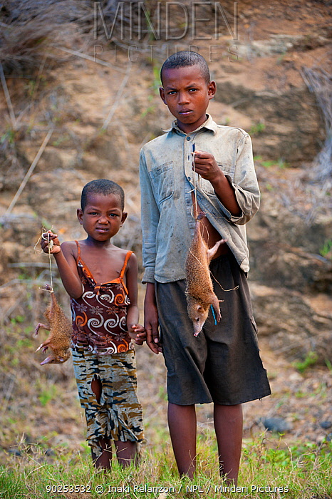 Children selling Common Tenrecs (Tenrec ecaudatus) as bushmeat by a road North Madagascar, Africa  -  Inaki Relanzon/ npl