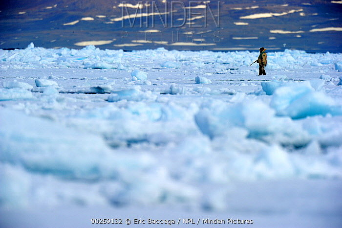 Inuit hunter on icepack Floe Edge, Arctic Bay, Baffin Island, Nunavut, Canada, April 2009  -  Eric Baccega/ npl