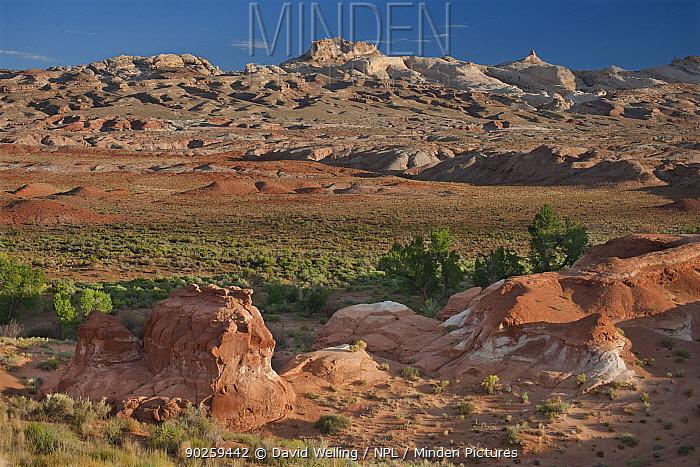 San Rafael Swell, near Goblin Valley, Utah, USA, August  -  David Welling/ npl