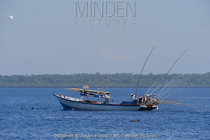 Funae fishermen catching skipjack tuna near Manado Tua using anchovies as live bait, Bunaken Island, Sulawesi, Indonesia, October 2009  -  Jurgen Freund/ npl