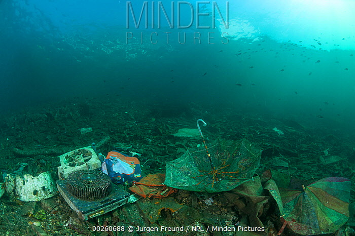 Human rubbish and waste thrown out to the coastal waters, settles on the seabed and becomes part of the marine life habitat, West Papua, Indonesia, December 2009  -  Jurgen Freund/ npl