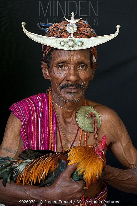 Portrait of East Timorese man in traditional clothing adn head dress, with cockerel, Maubara, East Timor, August 2010  -  Jurgen Freund/ npl