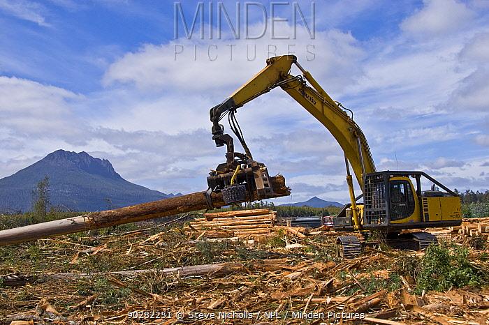 Logging of secondary forest, Florentine valley, Tasmania, Australia, February 2007  -  Steve Nicholls/ npl