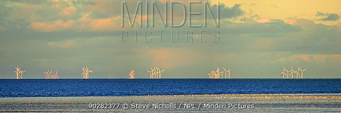 Wind turbines of a wind farm off the coast of The Wash with mudflats in the foreground, Snettisham, North Norfolk, UK, November 2010  -  Steve Nicholls/ npl