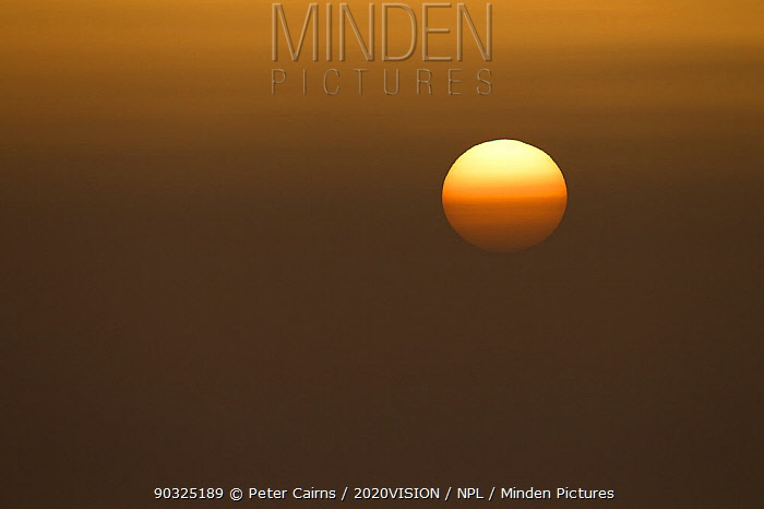Sunrise over the Solway Firth, Cumbria, UK, April 2011  -  Peter Cairns/ 2020V/ npl