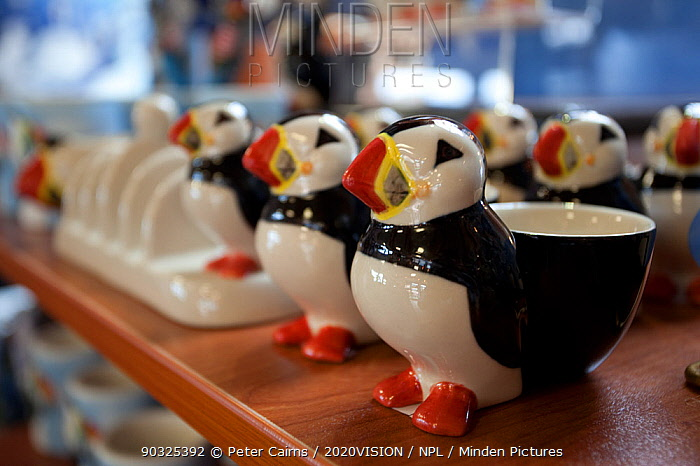 Souvenir shop selling puffin eggcups inside the Scottish Seabird Centre in North Berwick showing economic benefits of presence of Bass Rock, Firth of Forth, Scotland, UK, July 2010  -  Peter Cairns/ 2020V/ npl