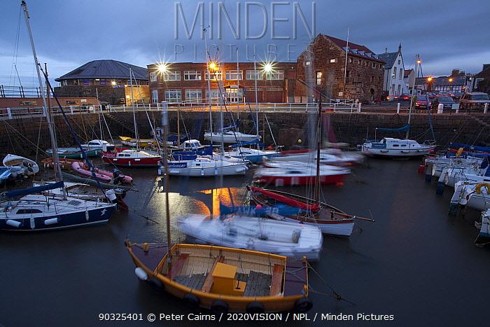 North Berwick harbour at night, East Lothian, Scotland, UK, July 2010  -  Peter Cairns/ 2020V/ npl