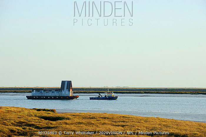 Tug towing house barge along River Roach, Wallasea Island, Essex, UK, February 2011  -  Terry Whittaker/ 2020V/ npl