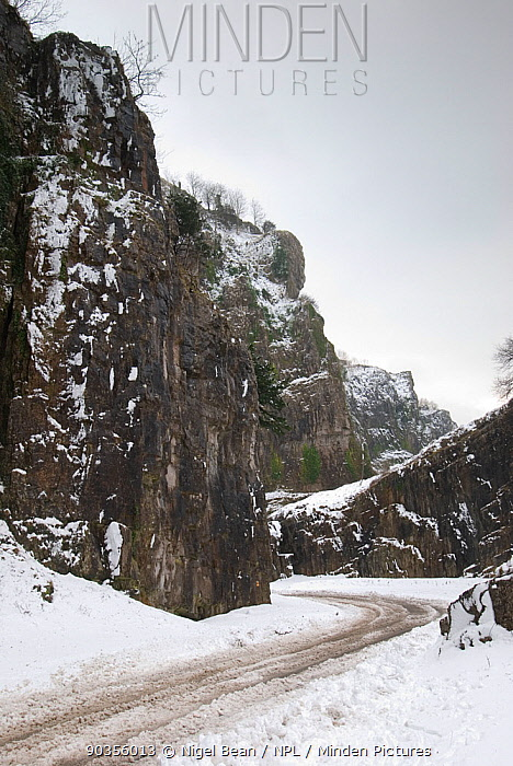 Cheddar Gorge after snowfall Somerset, UK, February 2009  -  Nigel Bean/ npl