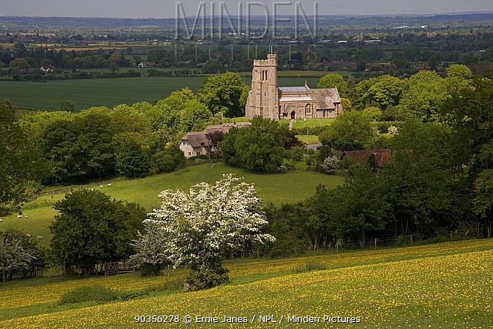 Ellesborough Church, nr Wendover, Buckinghamshire, UK  -  Ernie Janes/ npl