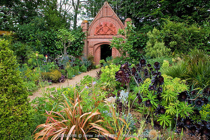 Gateway and plants growing in a dry garden, East Ruston, Norfolk, UK  -  Ernie Janes/ npl