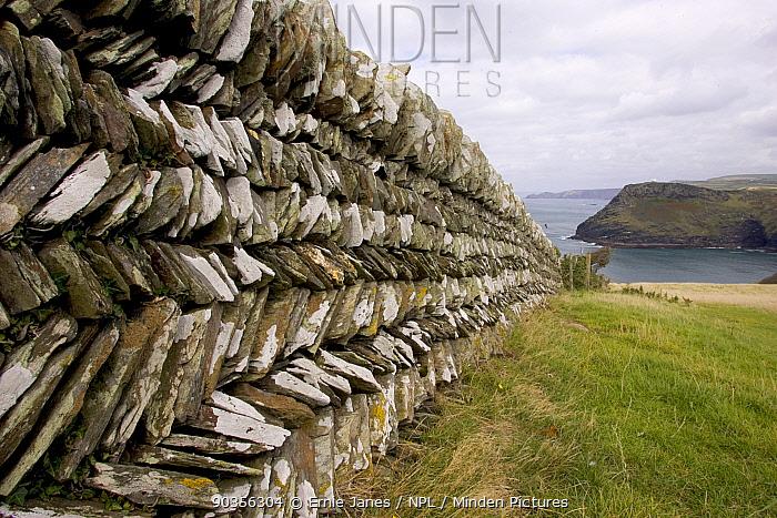 Traditional cornish drystone wall built in herringbone pattern, Bossiney, Cornwall, UK  -  Ernie Janes/ npl