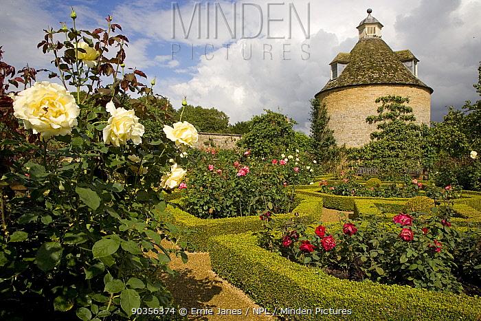 Dovecot and formal rose garden, Norfolk, UK  -  Ernie Janes/ npl