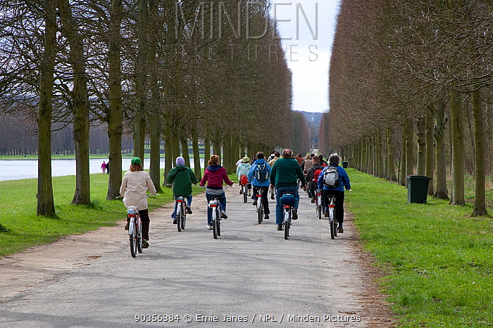 Group of cyclists in the gardens of Versailles Palace, Paris, France  -  Ernie Janes/ npl