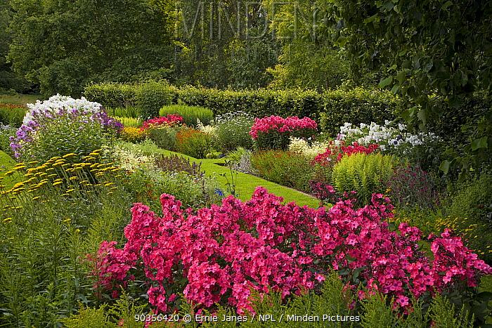 Flowers in garden border in woodland garden, Norfolk, UK  -  Ernie Janes/ npl