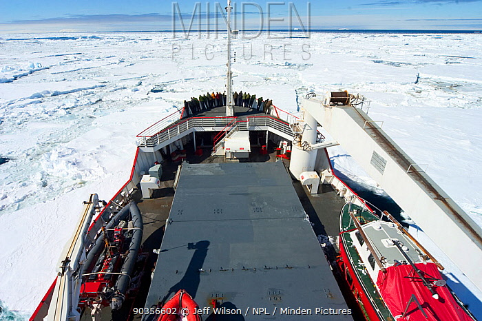 Royal Navy ship, HMS Endurance, makes its way through the sea ice of Antarctica, November 2008 Taken on location for the BBC series, Frozen Planet  -  Jeff Wilson/ npl