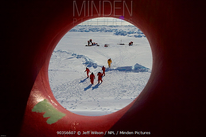View through the porthole of science teams and Frozen Planet film crew working on the sea ice in the Bering Sea, Alaska, USA, March 2008 The film crew were in search of Spectacled eider ducks, temperatures rarely got above -25C Taken on location for the BBC series, Frozen Planet  -  Jeff Wilson/ npl