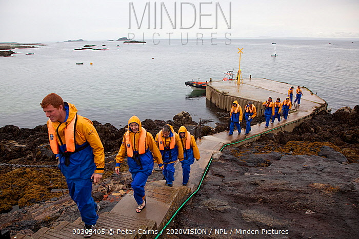 Group of tourists wearing waterproof clothing and life jackets landing on Bass Rock, North Berwick, Firth of Forth, Lothian, Scotland, UK, August 2011  -  Peter Cairns/ 2020V/ npl