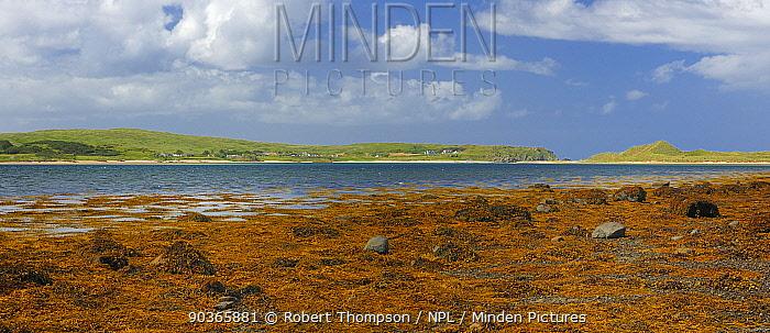 Trawbreaga Bay and Goorey Rocks at low tide, Malin village, Inishowen, County Donegal, Republic of Ireland, August 2011  -  Robert Thompson/ npl