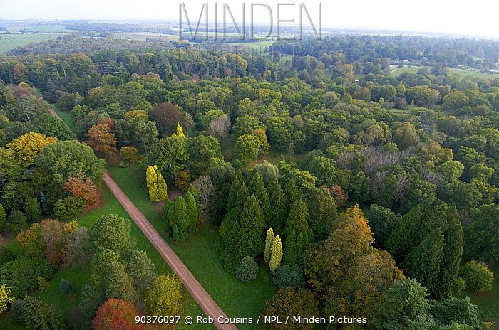 Aerial view of Silk Wood, Westonbirt Arboretum, Gloucestershire, UK, October 2011  -  Rob Cousins/ npl