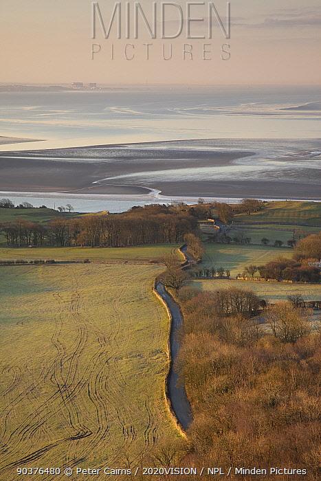 View from Arnside Knott over Morecambe Bay hinterland at dawn, Arnside, Cumbria, England, UK, February  -  Peter Cairns/ 2020V/ npl