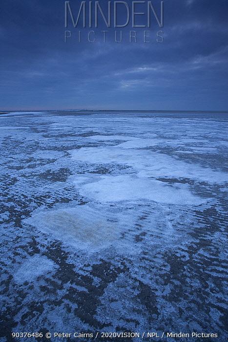 Ice on mudflats, Morecambe Bay, Silverdale, Cumbria, England, UK, February  -  Peter Cairns/ 2020V/ npl