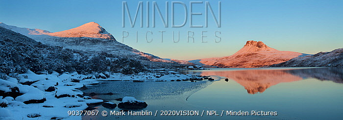 Panoramic of Sgurr Tuath and Stac Pollaidh at dawn, with partly frozen Loch Lurgainn in foreground, Coigach, Wester Ross, Scotland, UK, December 2010  -  Mark Hamblin/ 2020V/ npl